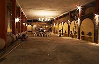 A tasting in the cellar with barrels and concrete fermentation tanks. Bodega Castillo Viejo Winery, Las Piedras, Canelones, Uruguay, South America