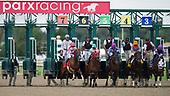 8th Pa Derby Champion Stakes - Aztec Sense