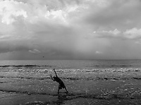 Boy fishing for crab in Jacmel, Haiti.