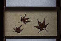 Maple Leaf Shoji at Funda-in - founded in 1321 as a family temple for the Ichijo clan, but always had strong ties with neighboring Tofuku-ji.  Funda-in has many interesting details in its interior:  dried leaves embedded in the paper shoji screens from different plant leaves.  Funda-in also has a very elaborate bamboo tsukubai water basin adorned with ikebana flower arrangements. The temple has three gardens: the South Garden is in front of the main hall and consists of raked gravel with a moss garden at the far end. On the moss lie two groups of stones: the one on the left represents a tortoise, the one on the right a crane.  The East Garden is made up of lots of moss, stones and rhododendrons. In its far end is a small pavilion with a round window.