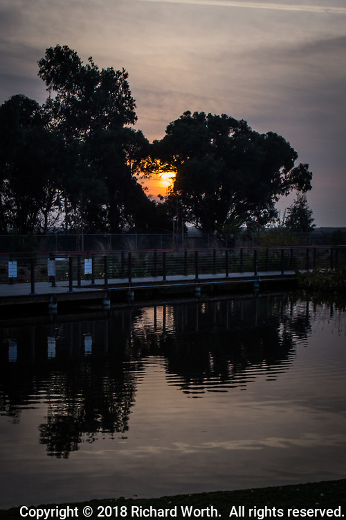 A nearly heart-shaped break in the trees framed the glowing slice of sunset at the renovated San Lorenzo Park, also known as The Duck Pond.