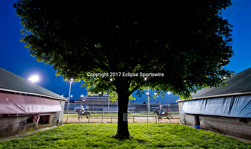 LOUISVILLE, KENTUCKY - MAY 02: Horses exercise on the track during Kentucky Derby and Oaks preparations at Churchill Downs on May 2, 2017 in Louisville, Kentucky. (Photo by Scott Serio/Eclipse Sportswire/Getty Images)