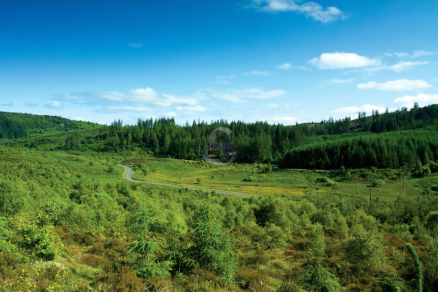 The Duke's Pass near Aberfoyle, Loch Lomond and The Trossachs National Park, Stirlingshire