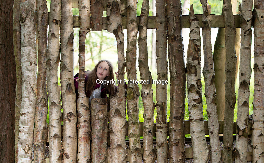 08/08/19<br /> <br /> (Previously unreleased photo taken on 09/06/19)<br /> <br /> Freya Kirkpatrick explores Calke Explore.<br /> <br /> Freya Kirkpatrick is one of the first to try out Calke Explore, a new natural play hub at the National<br /> Trust's Calke Abbey in Derbyshire.<br /> Families can explore a human-sized badger sett and giant bug hotel modelled on Calke Abbey, try an outdoor game of table tennis and discover woodlands, wetlands and open meadows.<br /> <br />  <br /> All Rights Reserved, F Stop Press Ltd +44 (0)7765 242650 www.fstoppress.com rod@fstoppress.com