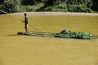 MADAGASCAR, region Manajary, town Vohilava, river ANDRANGARANGA, transport of banana on bamboo raft / MADAGASKAR Mananjary, Vohilava, Fluss ANDRANGARANGA, Transport von Bananen auf einem Bambus Floss