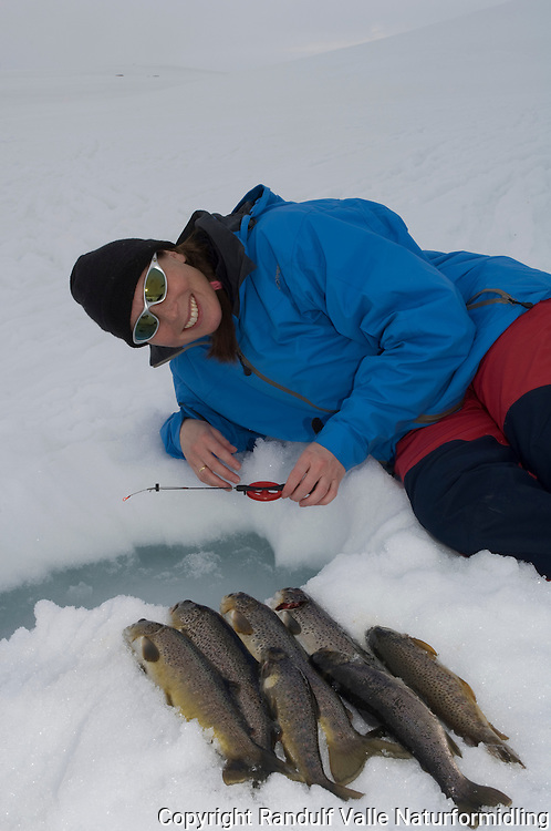 Jente med fangst av ørret tatt under isfiske ---- Girl with trout cought during ice fishing