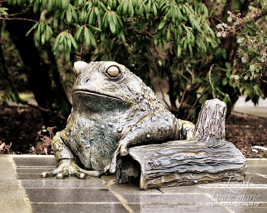 Bronze frog statue at Bellevue Botanical Gardens - crop desat