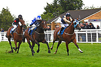 Winner of The Shadwell Racing Excellence Apprentice Handicap Handytalk (r) ridden by Oliver Searle and trained by Rod Millman during Evening Racing at Salisbury Racecourse on 11th June 2019
