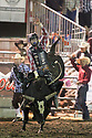 20 Aug 2014: Riker Carter scored a 83 during the finals ride of the Seminole Hard Rock Extreme Bulls competition at the Kitsap County Stampede in Bremerton, Washington.