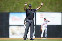 Umpire Thomas O'Neil calls time during the Appalachian League game between the Bristol Pirates and the db\ at American Legion Post 325 Field on July 1, 2018 in Danville, Virginia. The Braves defeated the Pirates 3-2 in 10 innings. (Brian Westerholt/Four Seam Images)