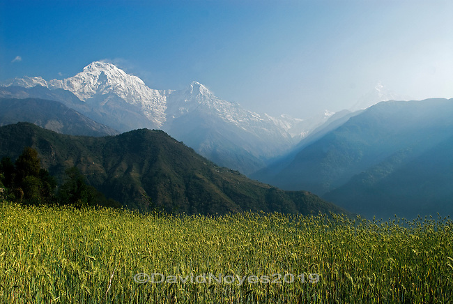 The Middle Hills of the Annapurna range. There are three main cultural zones in Nepal: the flat fertile lowlands known as the Terai, the Middle Hills, and the mountains of the Himalaya. Each has adopted farming methods and techniques to suit their environmental conditions.