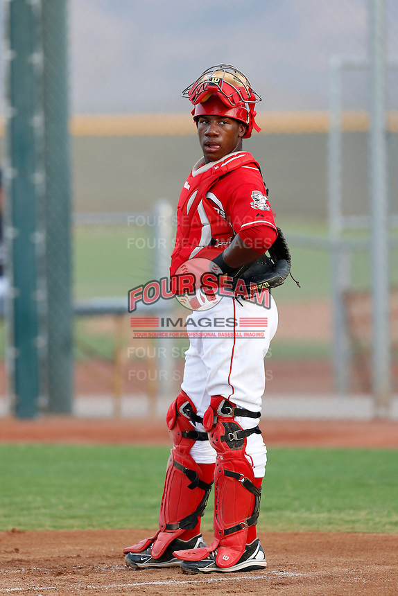Shedric Long #12 of the AZL Reds during a game against the AZL Padres at the Cincinnati Reds Spring Training Complex on July 13, 2013 in Goodyear, Arizona. AZL Reds defeated the AZL Padres, 11-10. (Larry Goren/Four Seam Images)