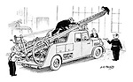 (A cat is stuck at the end of a fire engine's ladder)