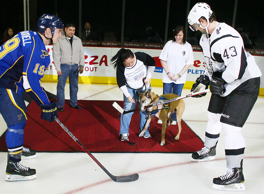 After delivering the game puck, a retired service dog bites San Antonio Rampage captain Nolan Yonkman's stick as Peoria Rivermen's Adam Cracknell, left, looks on, before an AHL hockey game, Saturday, Jan. 21, 2012, in San Antonio. (Darren Abate/pressphotointl.com)