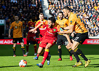 Norwich City's Lukas Rupp shields the ball from Wolverhampton Wanderers' Romain Saiss<br /> <br /> Photographer Alex Dodd/CameraSport<br /> <br /> The Premier League - Wolverhampton Wanderers v Norwich City - Sunday 23rd February 2020 - Molineux - Wolverhampton<br /> <br /> World Copyright © 2020 CameraSport. All rights reserved. 43 Linden Ave. Countesthorpe. Leicester. England. LE8 5PG - Tel: +44 (0) 116 277 4147 - admin@camerasport.com - www.camerasport.com