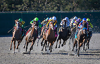 August 26, 2012. Dullahan and Joel Rosario(far left) turn for home on their way to winning the Pacific Classic(GI) at Del Mar Thoroughbred Club in Del Mar, CA..
