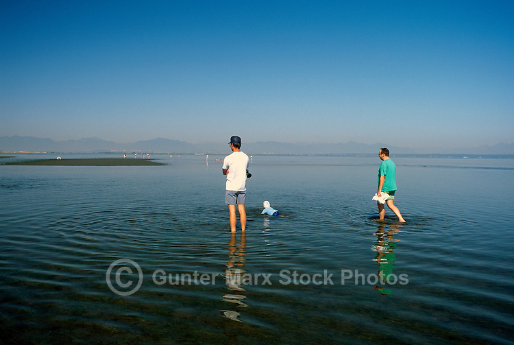 Fathers walking with Child in Water of Pacific Ocean, Boundary Bay Regional Park, Delta, BC, British Columbia, Canada