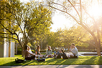 Occidental College students enjoy the sunset on campus, near the Gilman Fountain, March 28, 2018.<br /> (Photo by Marc Campos, Occidental College Photographer)