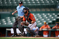 Baltimore Orioles catcher Cody Roberts (55) waits to receive a throw as home plate umpire Ben Engstrang watches the play during a Florida Instructional League game against the Pittsburgh Pirates on September 22, 2018 at Ed Smith Stadium in Sarasota, Florida.  (Mike Janes/Four Seam Images)