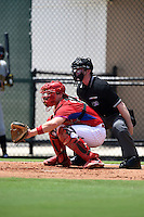 GCL Phillies catcher Joel Fisher (15) and umpire Matt Scott during a game against the GCL Pirates on June 26, 2014 at the Carpenter Complex in Clearwater, Florida.  GCL Phillies defeated the GCL Pirates 6-2.  (Mike Janes/Four Seam Images)