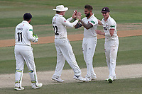 Peter Trego of Somerset celebrates with his team mates after taking the wicket of Alastair Cook during Essex CCC vs Somerset CCC, Specsavers County Championship Division 1 Cricket at The Cloudfm County Ground on 28th June 2018