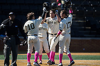 Will Craig (22) of the Wake Forest Demon Deacons is congratulated by teammates Nate Mondou (10), Bruce Steel (17) and Joey Rodriguez (8) after hitting a grand slam against the Virginia Tech Hokies at Wake Forest Baseball Park on March 7, 2015 in Winston-Salem, North Carolina.  The Hokies defeated the Demon Deacons 12-7 in game one of a double-header.   (Brian Westerholt/Four Seam Images)