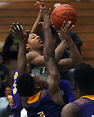Auburn Hills Avondale at West Bloomfield, Boys Varsity Basketball, 2/17/15