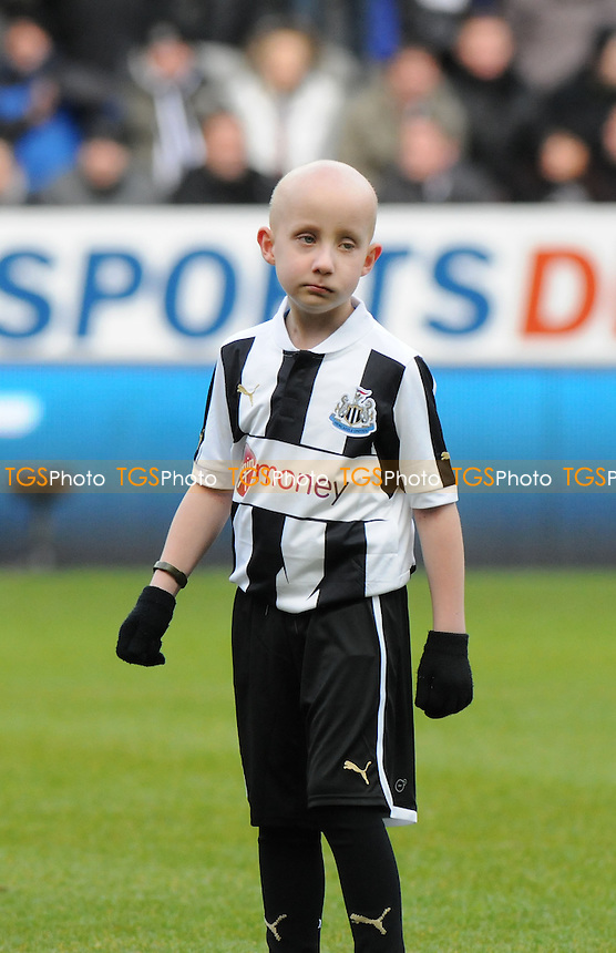 Newcastle United mascot Cory Davison - Newcastle United vs Stoke City - Barclays Premier League Football at St James Park, Newcastle upon Tyne - 10/03/13 - MANDATORY CREDIT: Steven White/TGSPHOTO - Self billing applies where appropriate - 0845 094 6026 - contact@tgsphoto.co.uk - NO UNPAID U