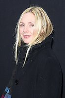 """NEW YORK, NY - FEBRUARY 11: Hope Davis at the World Premiere Of Warner Bros. Pictures' """"Winter's Tale"""" held at Ziegfeld Theatre on February 11, 2014 in New York City. (Photo by Jeffery Duran/Celebrity Monitor)"""