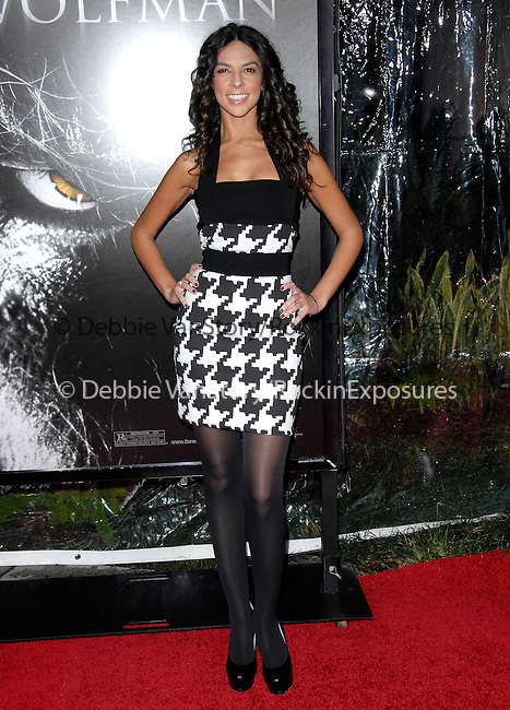 Terri Seymour at the Universal Pictures L.A. Premiere of The Wolfman held at The Arclight Theatre in Hollywood, California on February 09,2010                                                                   Copyright 2009  DVS / RockinExposures
