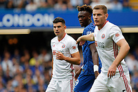 Tammy Abraham of Chelsea is sandwiched by John Egan and Jack O'Connell of Sheffield United during the Premier League match between Chelsea and Sheff United at Stamford Bridge, London, England on 31 August 2019. Photo by Carlton Myrie / PRiME Media Images.