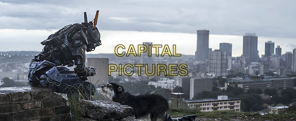SCENE<br /> in Chappie (2015) <br /> *Filmstill - Editorial Use Only*<br /> CAP/NFS<br /> Image supplied by Capital Pictures