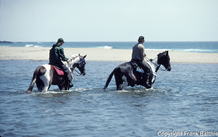 Horse patrol crossing creek at Ano Nuevo State Park