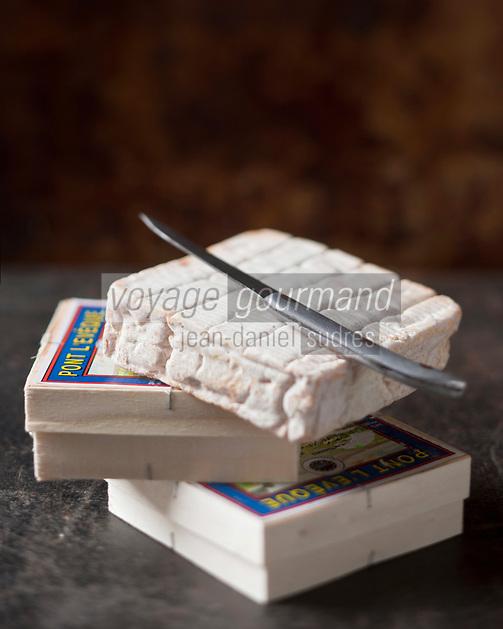 Europe/France/Normandie/Basse-Normandie/14/Calvados/Pays d'Auge: AOP, Pont-l'évêque au lait cru - Stylisme : Valérie LHOMME   <br /> // France, Calvados, Pays d'Auge, AOP, Pont Eveque raw milk, styling, Valerie Lhomme