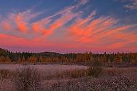 CLouds at sunrise over wetland<br />Kakabeka Falls Provincial Park<br />Ontario<br />Canada