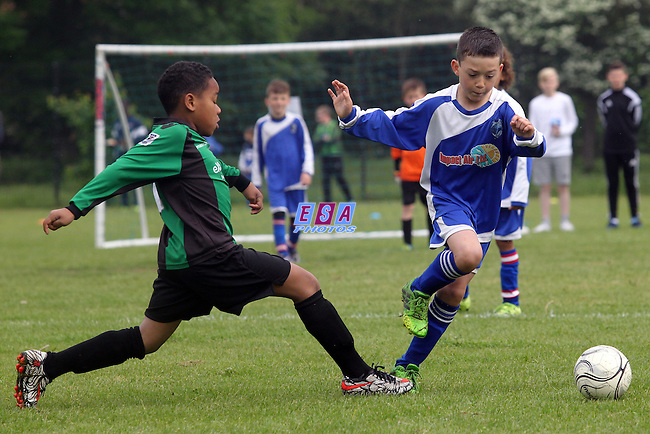 TEVIOT RANGERS v LEWISHAM YOUTH<br /> U9 SEMI FINAL<br /> THAMESMEAD SUMMER FESTIVAL OF FOOTBALL 2016<br /> SATURDAY 28TH MAY 2016<br /> BAYLISS AVENUE
