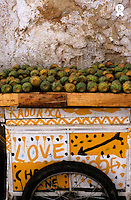 Cactus Stall  with graffiti, Fez, Morroco (Licence this image exclusively with Getty: http://www.gettyimages.com/detail/82406739 )