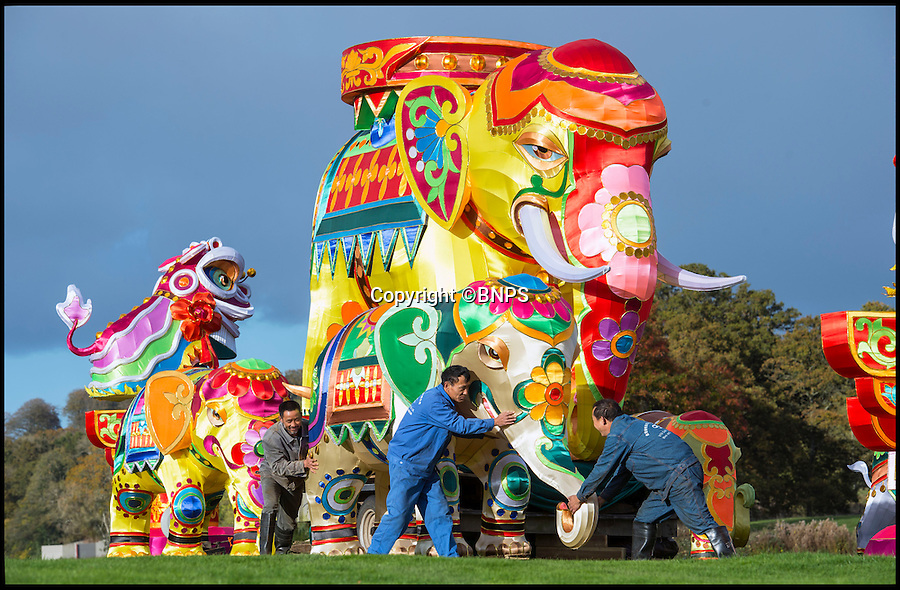 BNPS.co.uk (01202 558833)<br /> Pic: PhilYeomans/BNPS<br /> <br /> Skilled artists from Zigong put the finishing touches to a herd of Elephant.<br /> <br /> The largest Chinese 'Festival of Light' seen in Europe is taking shape at the Longleat House in Wiltshire - A small army of over 50 skillled workers have flown in from the remote village of Zigong in central China to create the stunning spectacle.<br /> <br /> Among the different scenes are a 20-metre tall Chinese temple, a 70-metre-long dragon, created using more than 10,000 porcelain cups, bowls, plates and dishes, and the mythical qilin – a chimerical hooved creature with the head of a lion – featuring more than 30,000 glass phials filled with coloured liquid.<br /> <br /> Massive traditional Chinese masks are also featured and there is also a bamboo forest which is home to a family of life-size pandas, giant elephants, zebras, lions and deer as well as giant lotus flowers floating on the lake.<br /> <br /> Filled with thousands of LED lights and handmade by a team of 50 highly-skilled craftsmen from Zigong in China's Sichuan province, the lanterns recreate a magical world of myths and legends.<br /> <br /> Set amid the beautiful backdrop of the landscaped grounds and gardens surrounding Longleat House, the lit structures also spill out on to Half Mile Lake to create a stunning and enchanting experience for visitors.<br /> <br /> It's the first time a festival of this size has taken place in the UK and the Chinese team behind the spectacular event believe its size and complexity make it unique throughout Europe.