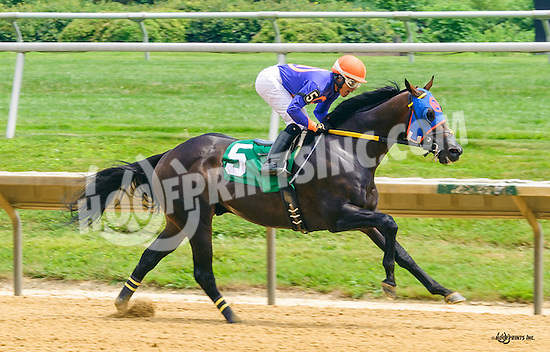Chicago Son winning at Delaware Park on 7/9/16