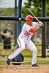 22 February 2019: Washington Nationals left fielder Juan Soto takes batting practice during a Spring Training workout at the Ballpark of the Palm Beaches in West Palm Beach, Florida. Mandatory Credit: Ed Wolfstein Photo *** RAW (NEF) Image File Available ***