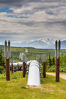 Trans Alaska oil pipeline is buried whenever possible, but permafrost soil conditions require the pipeline to be above ground. Metal fins help dissipate heat and cold.