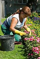 AUT, Oesterreich, Salzburger Land, Stadt Salzburg: Gaertnerin bei der Blumenpflege im Mirabellpark | AUT, Austria, Salzburger Land, Salzburg: gardener working at Mirabell Garden