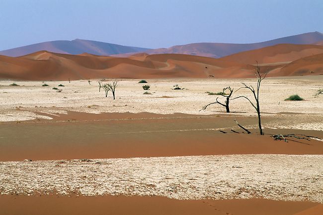 NAMIBIA, NAMIB-NAUKLUFT NATIONAL PARK, SOSSUSVLEI, SAND DUNES, DEAD TREES