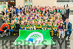Green Flag : Pupils, teachers and parents attening the presentation of the Green flag at Moyvane NS on Friday last. The flag was raised by Kerry Fooballers Colm Cooper & Barry John Keane.