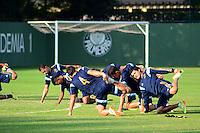 SÃO PAULO. SP 20.05.2014. PALMEIRAS / TREINO - Jogadores do Palmeiras durante o treino na Academia de Futebol região oeste nesta terça feira 20. ( Foto : Bruno Ulivieri / Brazil Photo Press )