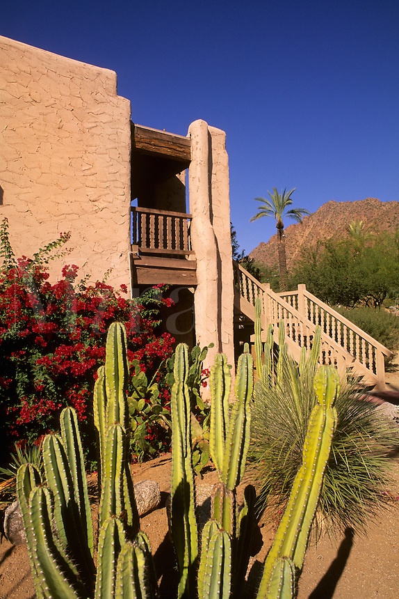 Cactus and architecture typical of Southwest buildings in Scottsdale Arizona US