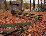 Delaware Water Gap National Recreation Area, NJ<br /> Split rail fence weaving through autumn leaves at Millbrook Village historic site
