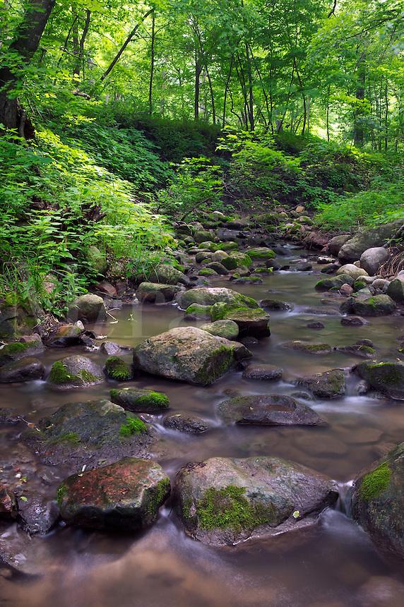 Rock Creek, Kilen Woods State Park, Minnesota
