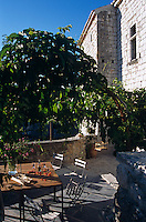 A wooden table and chairs in the shade of a tree on the terrace
