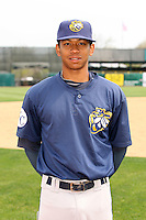 April 11 2010: Gerard Hall of the Burlington Bees. The Bees are the Low A affiliate of the Kansas City Royals. Photo by: Chris Proctor/Four Seam Images